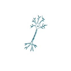 neurologie-ademwinst